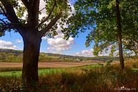 Donald Park - Mt Horeb, WI