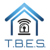 Tampa Bay Electronic Systems