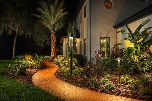 Photo Credit: Todd Erickson (Campus Landscape LLC, Tampa, FL)