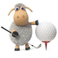 32nd Annual Carol Stream Chamber of Commerce John Wheeler Golf Tournament - Ball Run