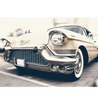 Grunt Style - Car Show