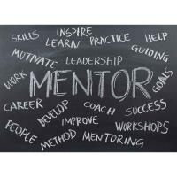 The Power of Mentoring and Role Modeling in STEM Disciplines