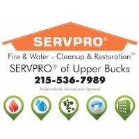 Allied Member Spotlight: SERVPRO