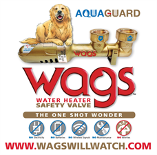 AQUAGUARD WAGS Valve