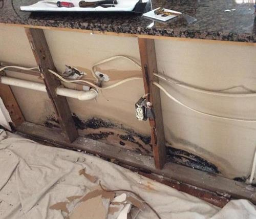 before mold remediation