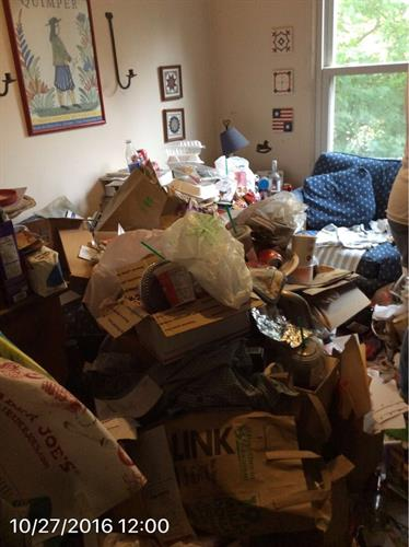 Before Hoarding Removal