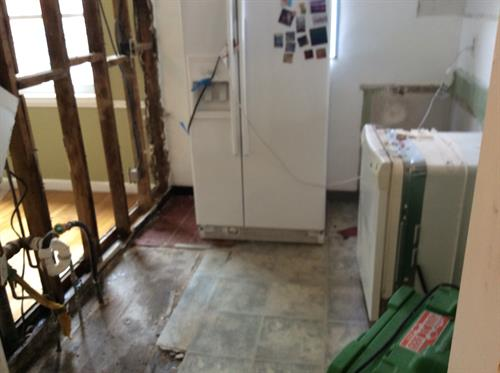 before kitchen mold remediation
