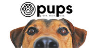 Pups Eco-Friendly Dog Services