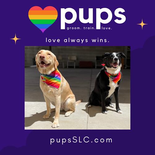 Pride 2021 Love Always Wins