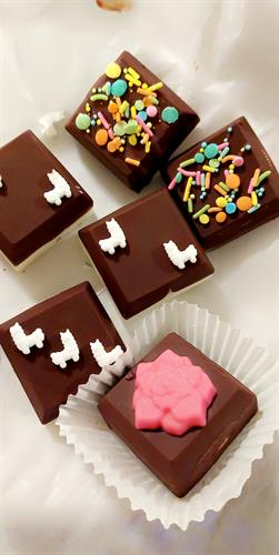 Gourmet square oreos covered in chocolate decorated with cute llama figures and sugar sprinkles and chocolate cactus and flowers