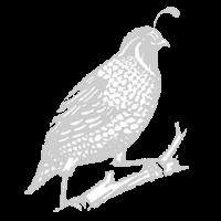 49th Annual Bird Supper