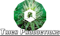 Trich Productions