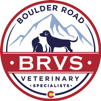 BOULDER ROAD VETERINARY SPECIALISTS