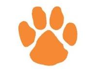 The Tigers Paw