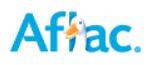AFLAC-Sue Johnson, District Sales Coordinator