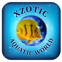 Xzotic Aquatic World, Inc.
