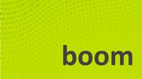 Boom Group Inc.
