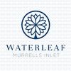 Waterleaf at Murrells Inlet