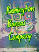 Remington Bonsai