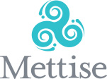 The Mettise Group