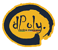 D'Poly Taco Grill & Beer