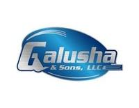 Galusha & Sons LLC