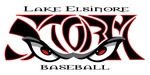Lake Elsinore Storm Baseball Club