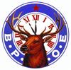 Rochester Elks #1393