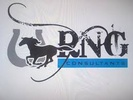 RNG Consultants Ltd