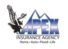 Apex Insurance & Investment Group LLC