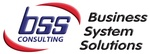 Business System Solutions