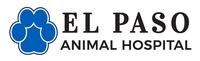 El Paso Animal Hospital