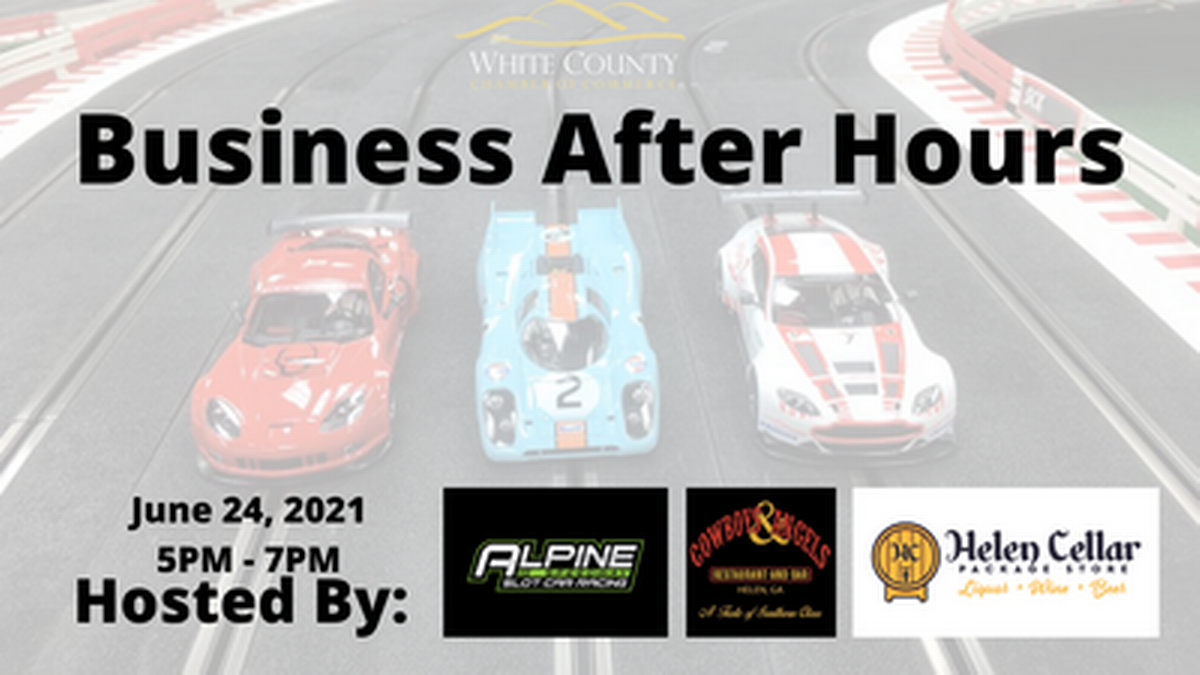 Business After Hours at Alpine Speedway Slot Car Racing