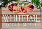 WHITETAIL LODGE MOTEL