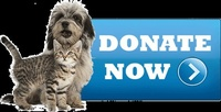 For the Love of Paws Senior Pet Sanctuary, Inc