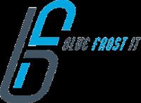 Blue Frost IT LLC