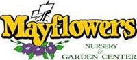 Mayflowers Garden LTD