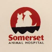 Somerset Animal Hospital