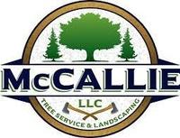 McCallies LLC