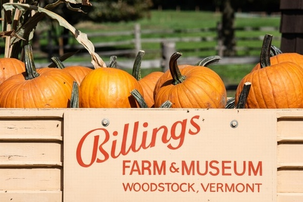 Billings Farm & Museum - Celebrate the Harvest Season