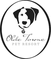 Olde Towne Pet Resort Dulles