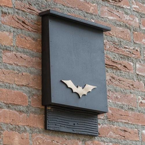 Build A Bat Or Owl Box Jul 11 2019