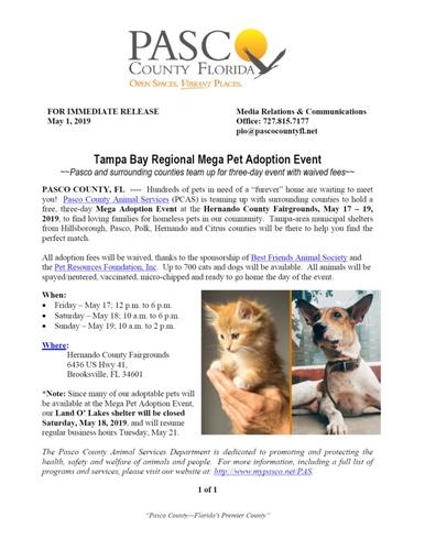 Calendar For December 2020 Tampa Bay Events Tampa Bay Regional Mega Pet Adoption Event   Dec 26, 2020