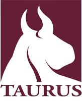 Taurus Investment Holdings, LLC