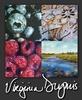 Virginia Dupuis SCA, Visual Artist