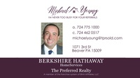 Michael Young at Berkshire Hathaway Home Services The Preferred Realty