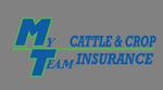 My Team Insurance