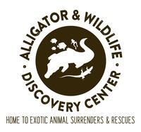 Alligator Attraction