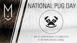 National Pug Day Party at Maplewood Brewery & Distillery