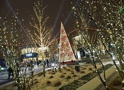 Tree Lighting Ceremony at NewCity